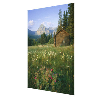 Old Park Service cabin in the Cut Bank Valley Canvas Prints