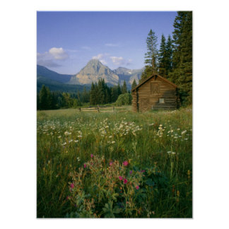 Old Park Service cabin in the Cut Bank Valley Poster