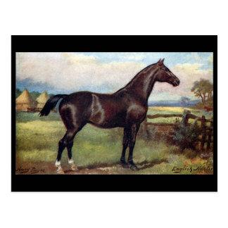 Old Postcard - English Hunter