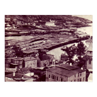 Old Postcard - Petty Harbour, Newfoundland