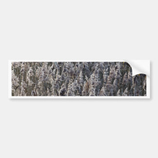 Old reed grass bumper sticker