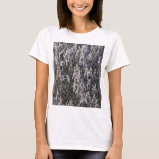 Old reed grass on a winter day. T-Shirt
