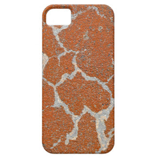 Old russet color on concrete iPhone 5 cases