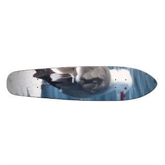 old school bird board skateboard deck