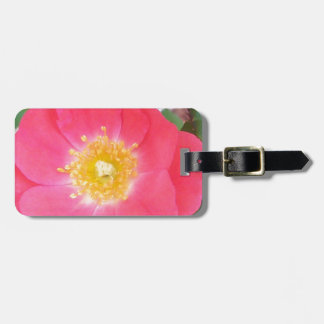 Old School Salmon colored rose Luggage Tag