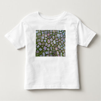 Old Stone Pavement With Moss And Grass Tshirt