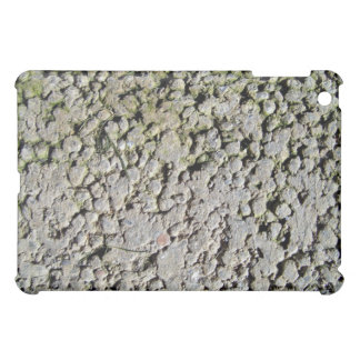 Old stone texture with moss case for the iPad mini