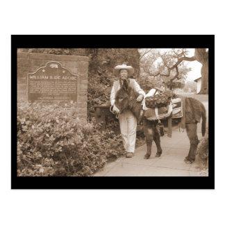 Old Time donkey postcard