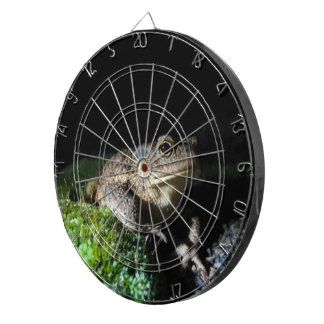 Old Toad - Metal Cage Dartboards
