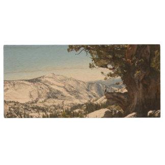 Old Tree at Yosemite National Park Wood USB 2.0 Flash Drive