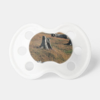 Old tree stumps on farmland baby pacifiers