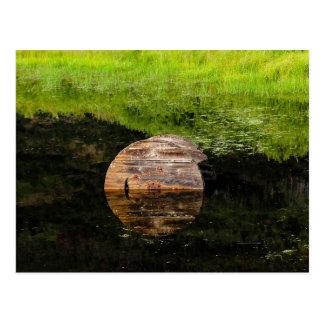 Old wood spool in water postcard