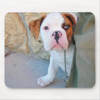 Olde English Bulldog Puppy Mouse Pads