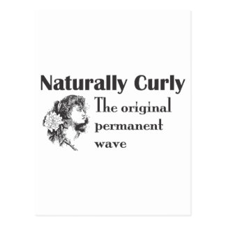 Olde World Naturally Curly Postcard