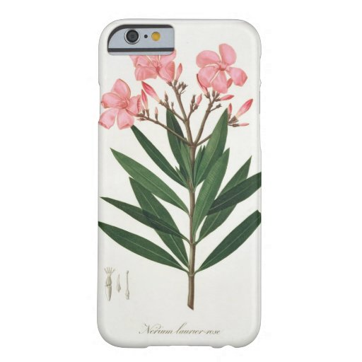 Oleander from 'Phytographie Medicale' by Joseph Ro iPhone 6 Case