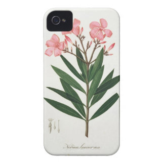 Oleander from 'Phytographie Medicale' by Joseph Ro iPhone 4 Cases