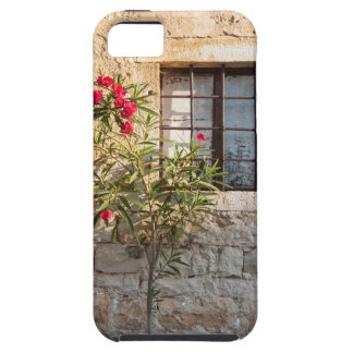 Oleander in Flower-pot, Croatia Case For The iPhone 5