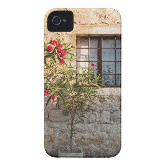 Oleander in Flower-pot, Croatia iPhone 4 Covers