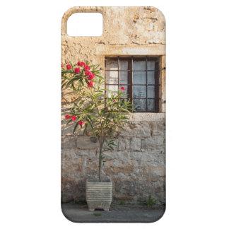 Oleander in Flower-pot, Croatia iPhone 5 Case