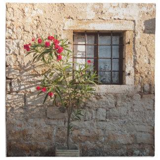 Oleander in Flower-pot, Croatia Napkin