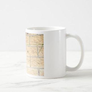 OLIVE BACK SUNBIRD QUEENSLAND AUSTRALIA COFFEE MUG