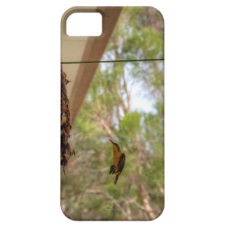 OLIVE BACKED BIRD QUEENSLAND AUSTRALIA CASE FOR THE iPhone 5