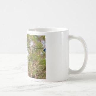 OLIVE BACKED BIRD QUEENSLAND AUSTRALIA COFFEE MUG