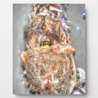 OLIVE BACKED SUNBIRD AUSTRALIA ART EFFECTS PLAQUE