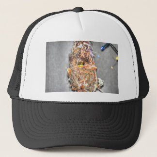 OLIVE BACKED SUNBIRD AUSTRALIA ART EFFECTS TRUCKER HAT