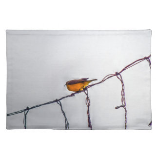 OLIVE BACKED SUNBIRD AUSTRALIA WITH ART EFFECTS PLACEMATS