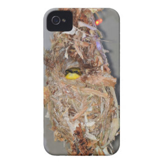 OLIVE BACKED SUNBIRD IN NEST AUSTRALIA iPhone 4 Case-Mate CASES