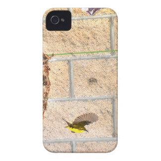OLIVE BACKED SUNBIRD QUEENSLAND AUSTRALIA Case-Mate iPhone 4 CASES
