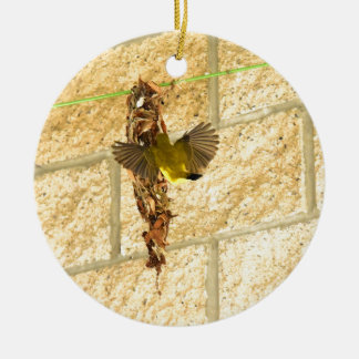 OLIVE BACKED SUNBIRD QUEENSLAND AUSTRALIA CERAMIC ORNAMENT