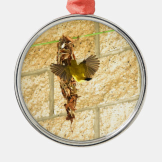 OLIVE BACKED SUNBIRD QUEENSLAND AUSTRALIA METAL ORNAMENT