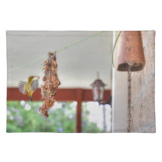 OLIVE BACKED SUNBIRD QUEENSLAND AUSTRALIA PLACEMAT