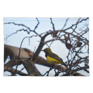 OLIVE BACKED SUNBIRD RURAL QUEENSLAND AUSTRALIA PLACEMAT