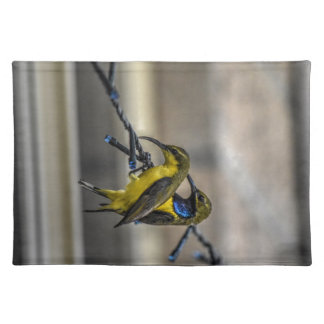 OLIVE BACKED SUNBIRDS RURAL QUEENSLAND AUSTRALIA PLACEMAT
