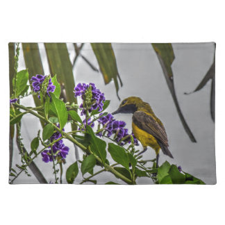OLIVE BACKED SUNBORD QUEENSLAND WITH ART EFFECTS PLACEMATS