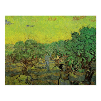 Olive Grove with Picking Figures by van Gogh Postcard