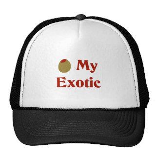 Olive (I Love) My Exotic Mesh Hat