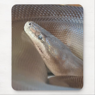 Olive Python Mouse Pad