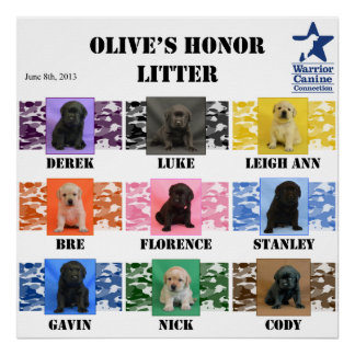 Olive s honor Litter Puppy Poster