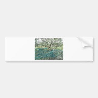 Olive tree in the garden bumper sticker