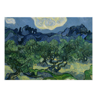 Olive Trees by Van Gogh Poster