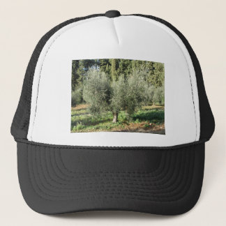 Olive trees in a sunny day. Tuscany, Italy Trucker Hat