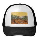 Olive Trees Mesh Hats