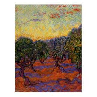 Olive Trees - Vincent Van Gogh Postcard
