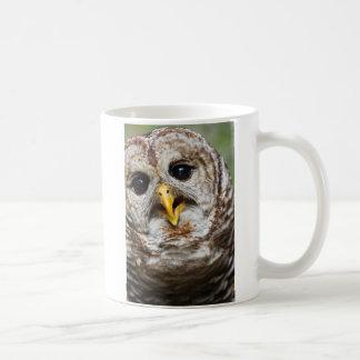 Oliver Owl Mug