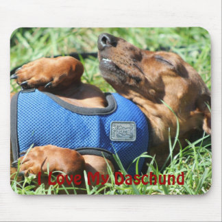 Olli the Daschund Mousepad