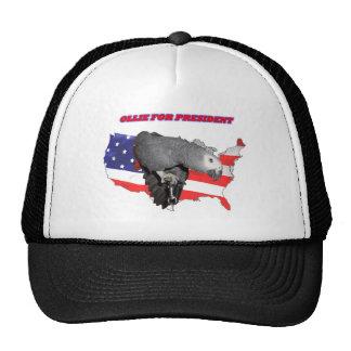 Ollie For President Cap